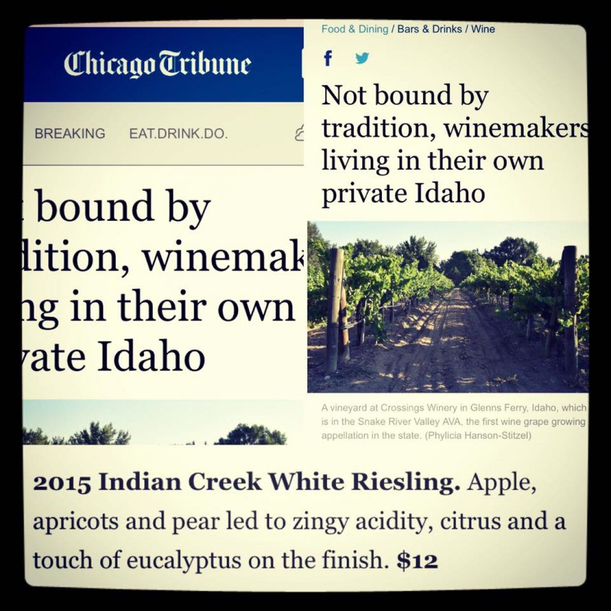 Rave Riesling review from the Chicago Tribune!